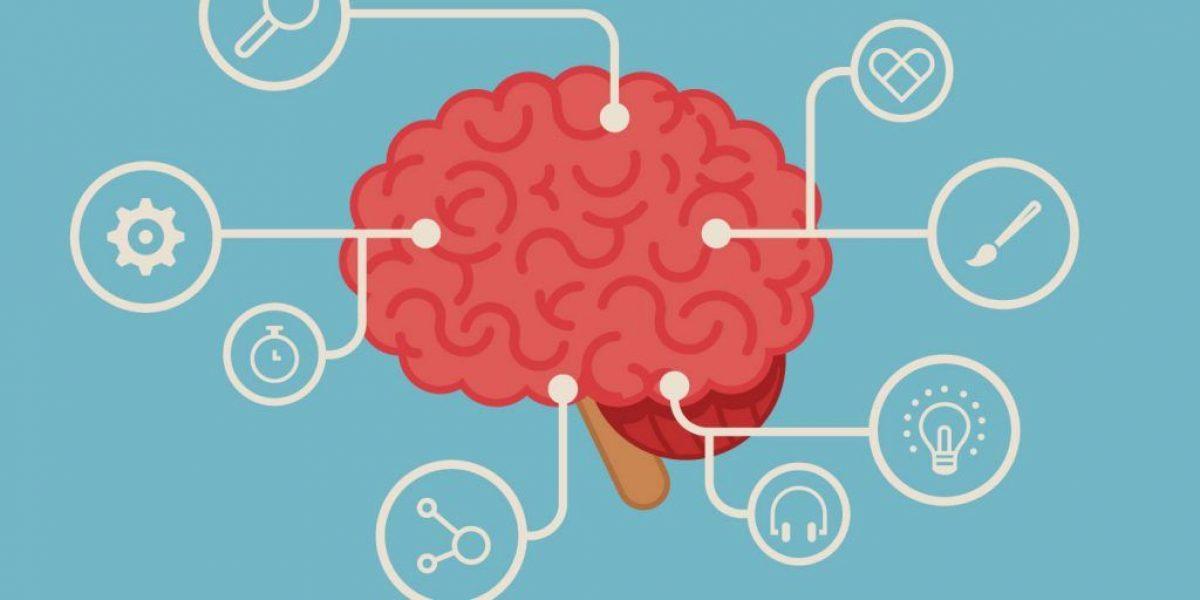 Brain-ideas