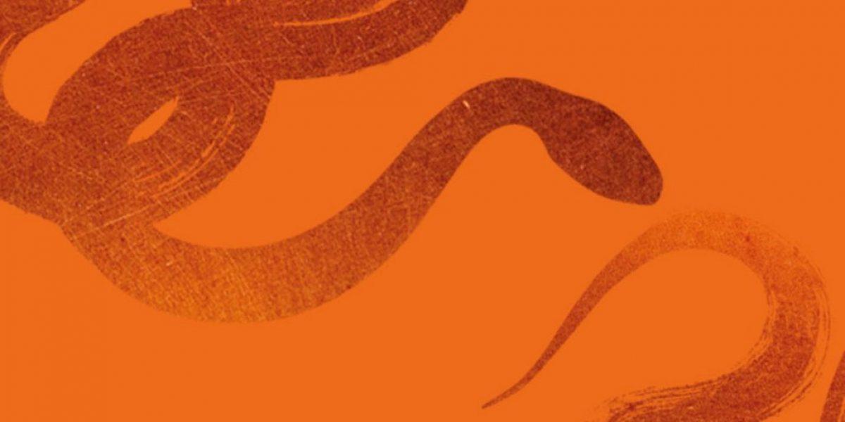 Snake-orange