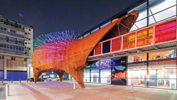 Hedgehog-architecture