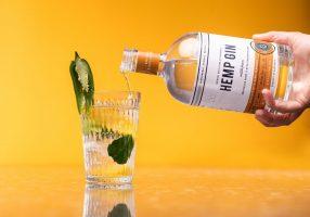 M2now.com - This Spirits Company Uses Hemp To Distil Its Gin & Vodka